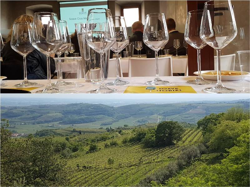 Soave tasting notes