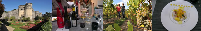 Wine Tasting In The Loire Valley